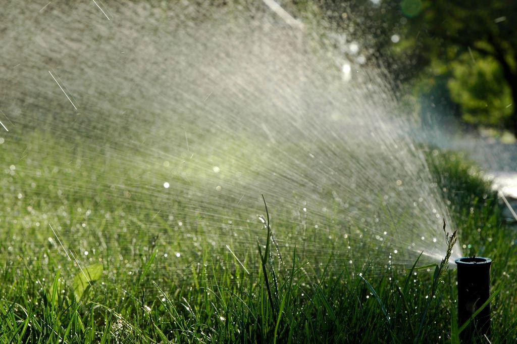 Sprinkler spraying water on lawn